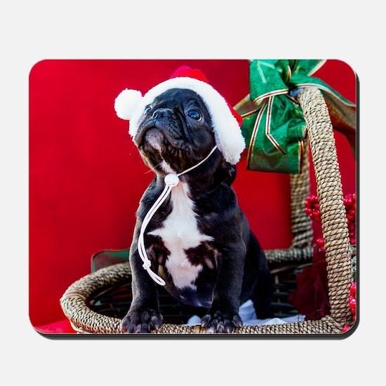 Black French Bulldog Puppy Wearing a San Mousepad