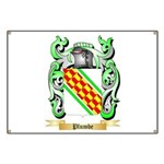 Plumbe Banner