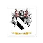 Plucknett Square Sticker 3