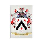 Plaza Rectangle Magnet (100 pack)