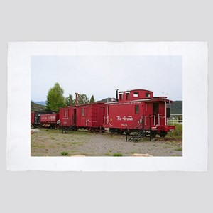 Steam train carriage accommodation, Ar 4' x 6' Rug