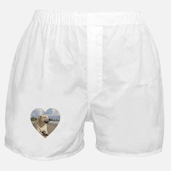 BEACH DOGS Boxer Shorts