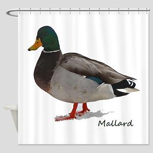 Mallard Duck Shower Curtain