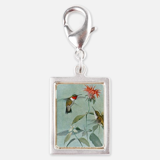 Hummingbirds Charms