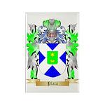 Plata Rectangle Magnet (100 pack)