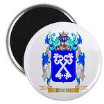 Plaschke Magnet