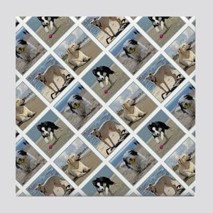 BEACH DOGS Tile Coaster