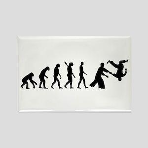 Evolution Aikido Rectangle Magnet