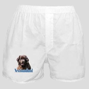 Newf(brown)Name Boxer Shorts