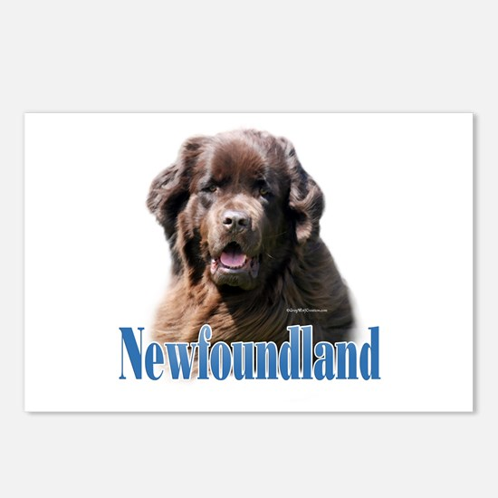 Newf(brown)Name Postcards (Package of 8)