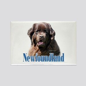 Newf(brown)Name Rectangle Magnet