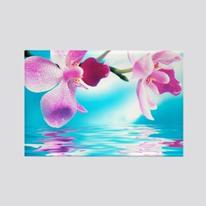 Beautiful Orchids Magnets