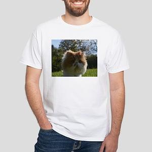 persian orange white T-Shirt