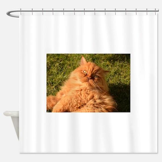 persian orange Shower Curtain