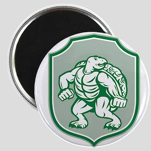 Green Turtle Fighter Mascot Shield Retro Magnets