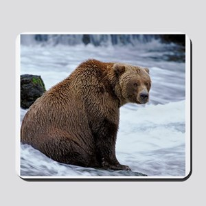 Big Grizzly Mousepad