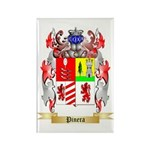 Pinera Rectangle Magnet (100 pack)