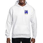 Pile Hooded Sweatshirt