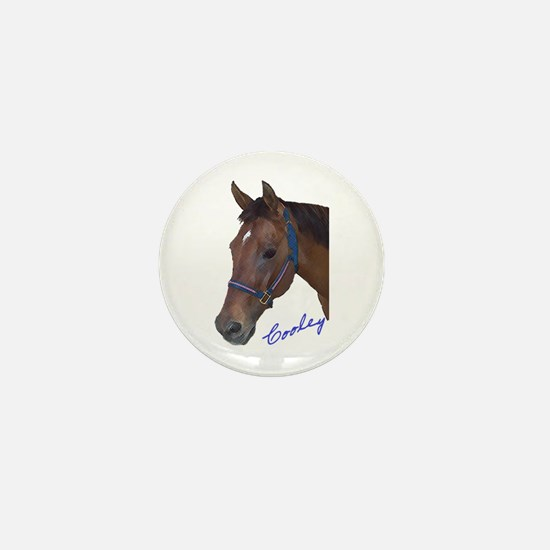 Cooley Mini Button