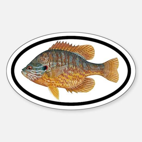 Sunfish Fishing Oval Decal