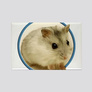 Teeny Hamster in Circle Magnets