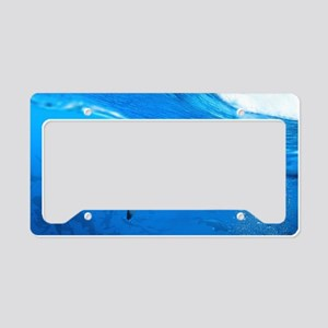 Underwater Shark License Plate Holder