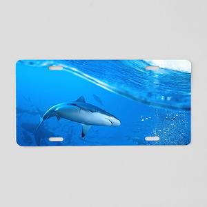 Underwater Shark Aluminum License Plate