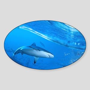 Underwater Shark Sticker
