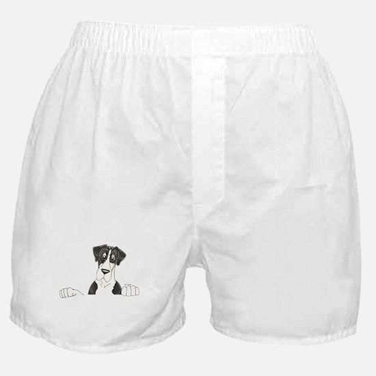 NMtl Lookover Boxer Shorts