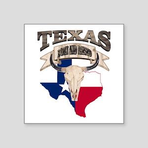 Bull Skull Texas home Sticker