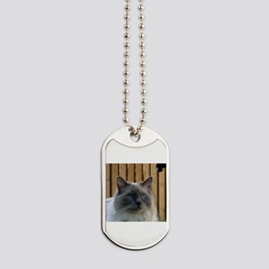 ragdoll Dog Tags