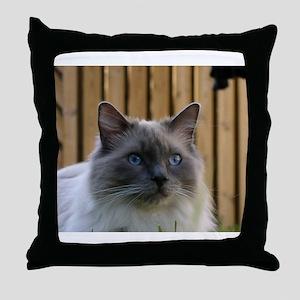 ragdoll Throw Pillow