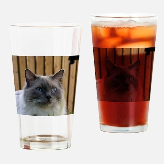 ragdoll Drinking Glass