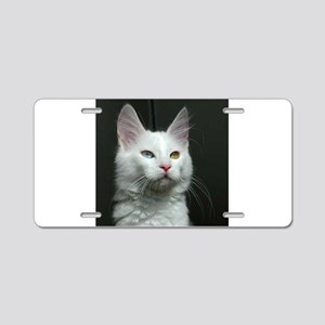turkish angora two colored eyes white Aluminum Lic