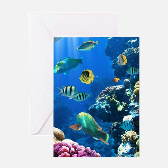Sea Life Greeting Cards