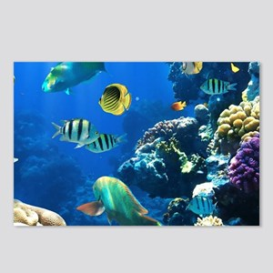 Sea Life Postcards (Package of 8)