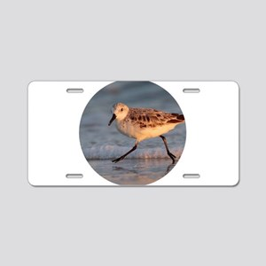 Beach Walker Aluminum License Plate