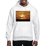 Love of Country Hooded Sweatshirt