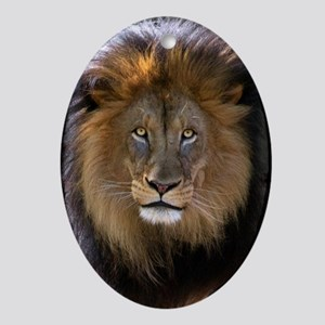 Lion face Oval Ornament