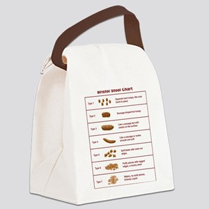 Bristol Stool Chart / Scale Canvas Lunch Bag