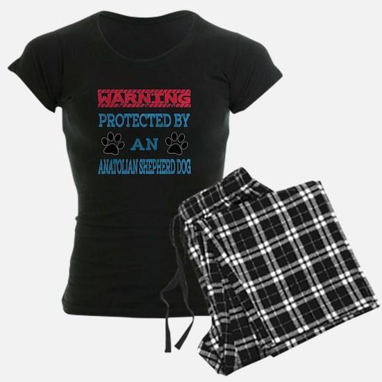 Warning Protected by an Anat Pajamas
