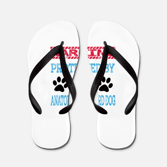 Warning Protected by an Anatolian Sheph Flip Flops
