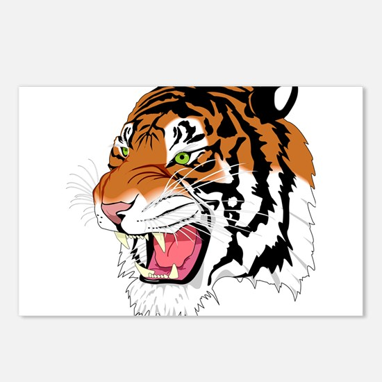 Tiger Postcards (Package of 8)