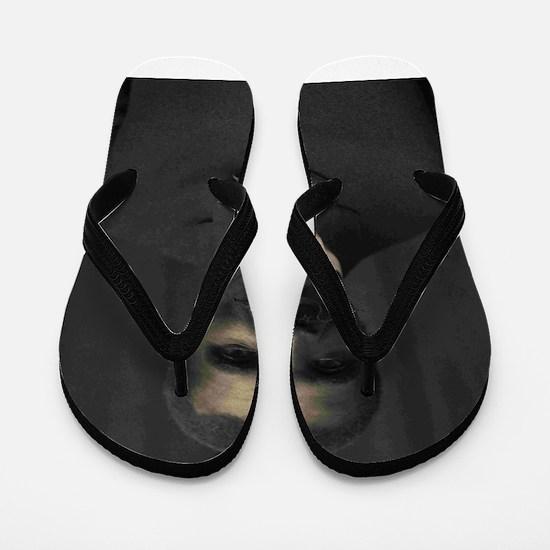 George Washington Carver Flip Flops