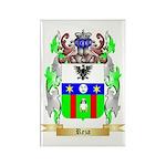 Reza Rectangle Magnet (100 pack)