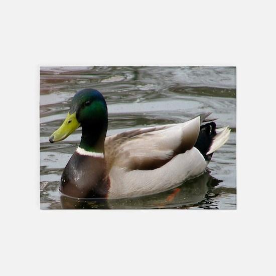 Mallard Duck On Scudder Pond 5'x7'Area Rug