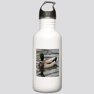 Mallard Duck On Scudde Stainless Water Bottle 1.0L