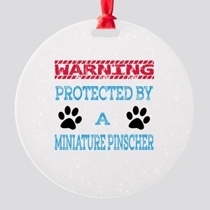 Warning Protected by a Miniature Pi Round Ornament