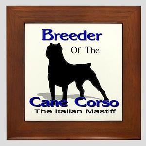 Cane Corso Breeder Framed Tile