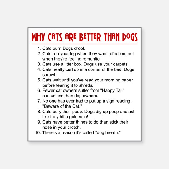 Cats Are Better Than Dogs Rectangle Sticker